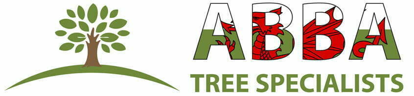Abba Tree Specialist